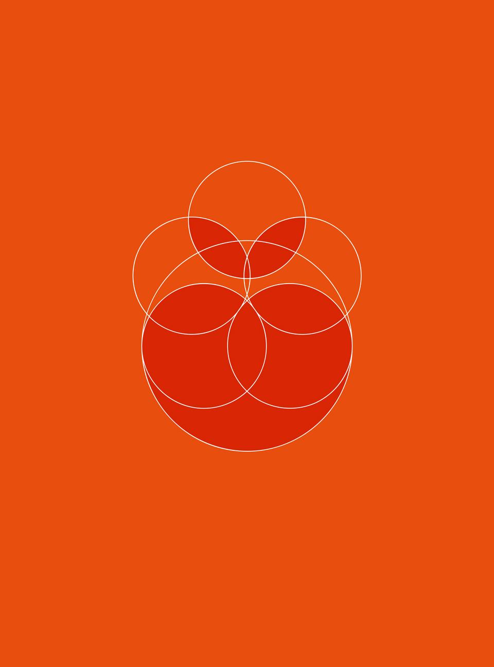 Mandarine - 3